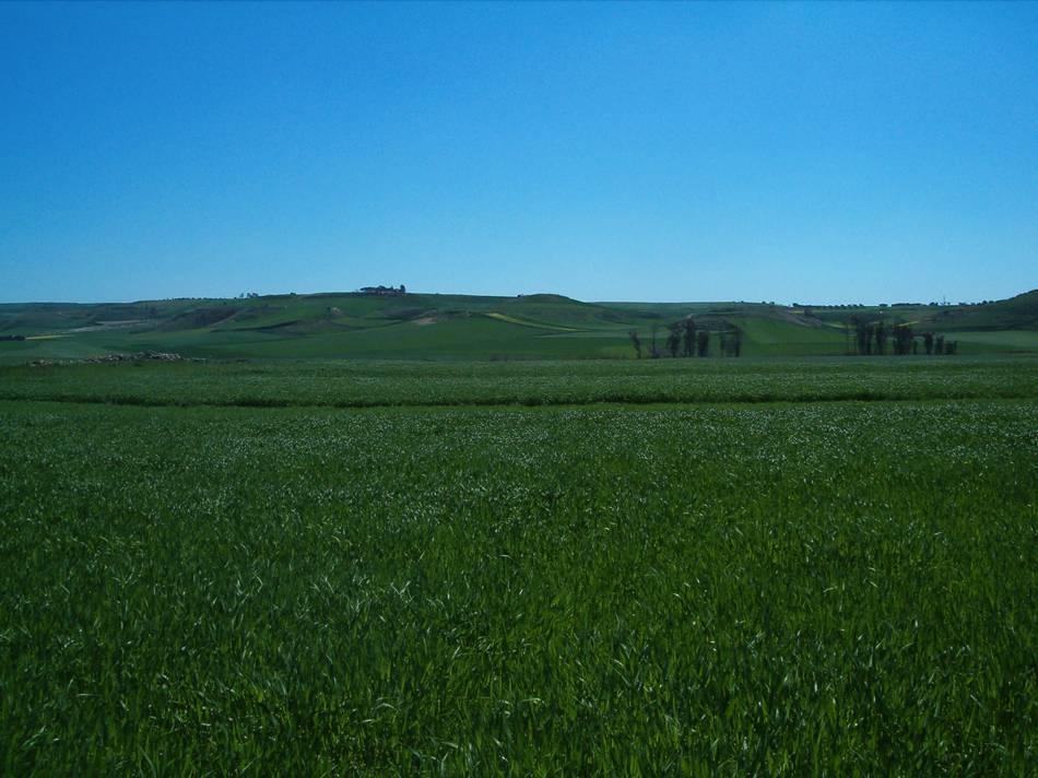 Anni 2006 – 2009, progetto per l'ammissione ai finanziamenti del P.O.R. Sardegna